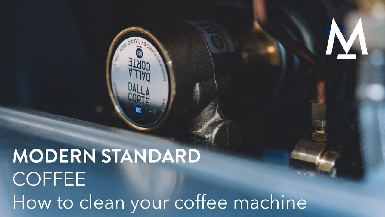 Modern Standard Coffee How To Clean Your Coffee Machine