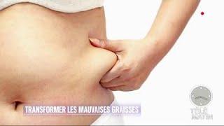 Santé - Transformer votre mauvaise graisse en bonne graisse