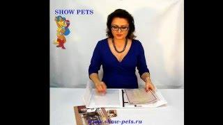 Папка для рекламы и документов на выставке кошек