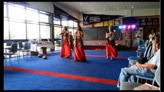 Bollydazzlers perform on Australia Day at the Shepley Cricket Oval T20 match 0405152149
