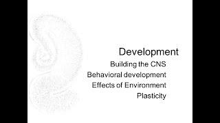 Chapter 8 Development