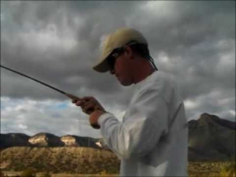 Back To Back Carp - Colorado River Fly Fishing