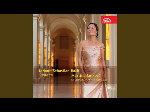 Ich habe genug. (Cantata to the feast of Purification of the Virgin Mary) , BWV 82a - Aria: Ich...