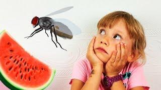 Alena y Pasha huyen de los insectos Recopilación de historias divertidas para niños