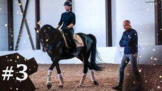 Как выбрать крутую лошадь!И должна ли она гулять?Почему нельзя пропускать мастер-классы и семинары?