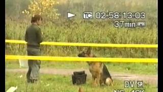 Police K9 Dog Training In Russia