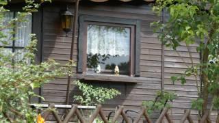 WALDPARK EIFEL | Campingplatz Irsental ( Irrhausen / Eifel ) // Sommer 2009