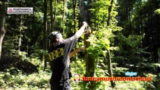 Посев Спор #Вешенки на #пеньки  Экология и #вешенка(Споры вешенки, которые я собрал в предыдущем видео http://goo.gl/i09JNV я буду высевать в лесу в местах, которые я..., 2014-07-09T21:48:39.000Z)