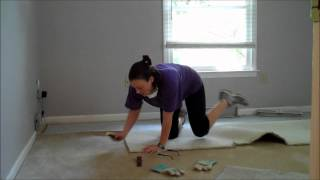 Single Ladies DIY Project - Carpet Removal