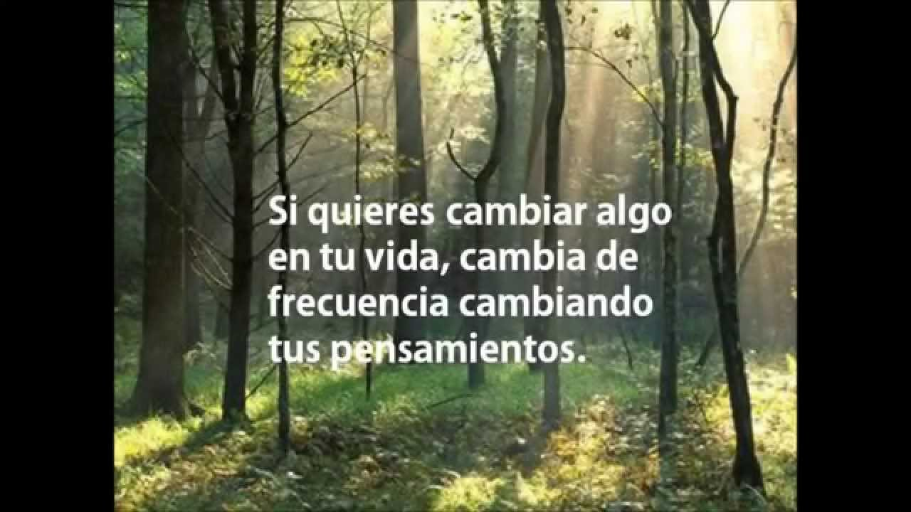 El secreto frases celebres del libro wmv youtube for Cancion de la pelicula el jardin secreto