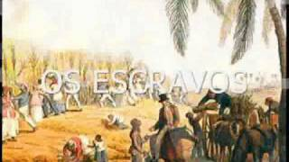 ECONOMIA AÇUCAREIRA - História Brasil Colonial