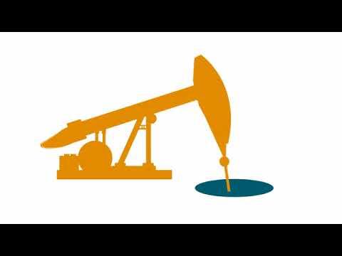 4  Understanding the Oil Data Report