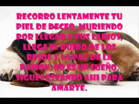Frases De Amor Largas Wmv Youtube