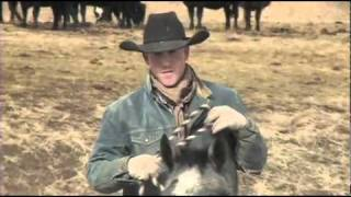 I Am Angus - Dan Conn, Conn Ranch / Sunrise Cattle Co., RFD-TV