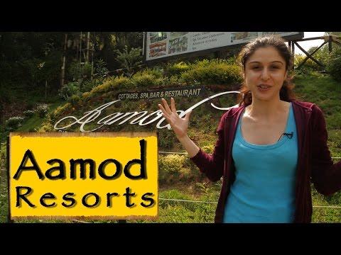 Aamod Resorts   Shoghi    Shimla