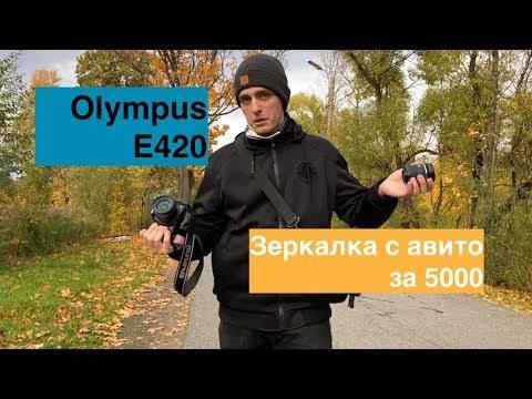 Недорогая зеркалка с Авито: обзор Olympus 420 (аналог Canon 400,450)