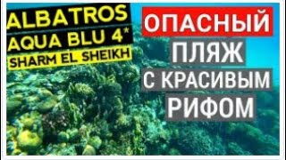 Albatros Aqua Blu Sharm El Sheikh 4 обзор питания Обед ресторан Culina Отдых в Египте 2020