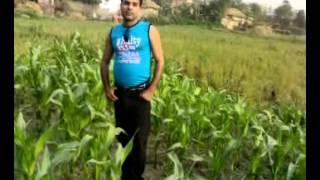 sawan ke jhulo ne, actor and directer*Naushad khan  bheriharwa bìhar*