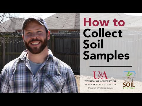 Soil Testing: How to Collect Soil Samples at Home