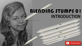 How to Use Blending Stumps 01 - Introduction By Chami