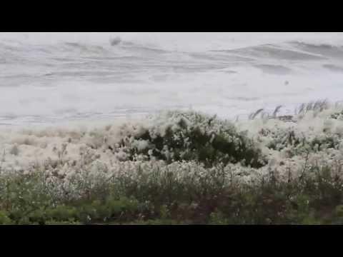 Sea Foam Blizzard