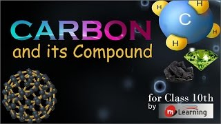 Carbon and its Compounds for X Standard