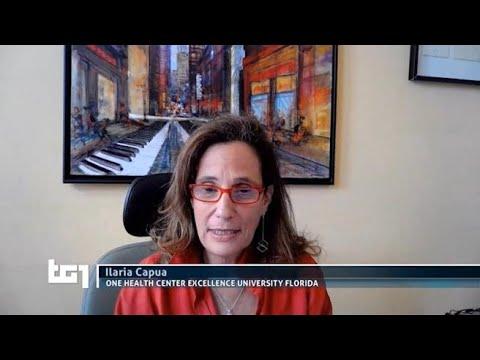 Stop al vaccino, Capua: «È giusto rispettare i criteri di sicurezza prima della...