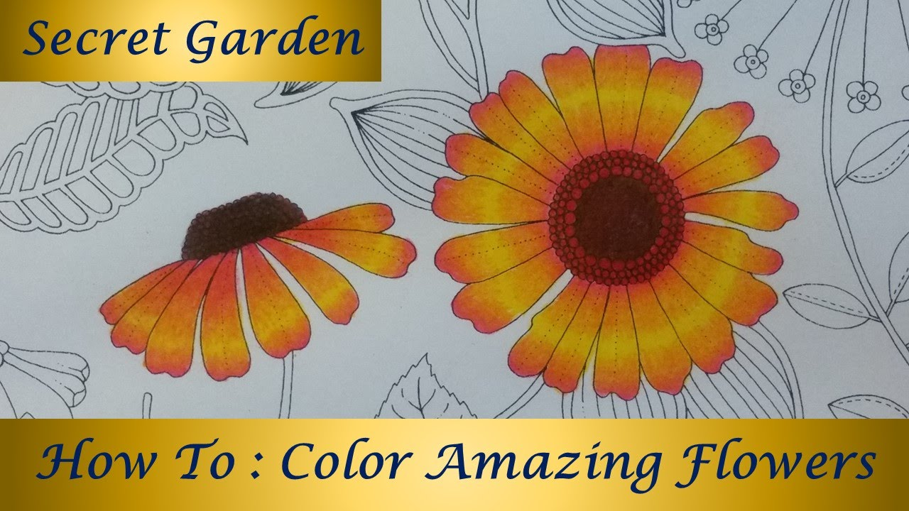 How To : Color Amazing Flowers | Secret Garden Coloring Book - YouTube