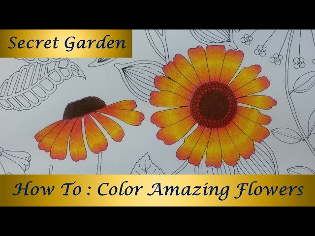 - How To : Color Amazing 🌺Flowers🌸 SECRET GARDEN Coloring Book By Johanna  Basford - YouTube