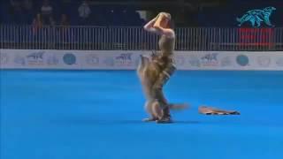 Очень умная русская собака
