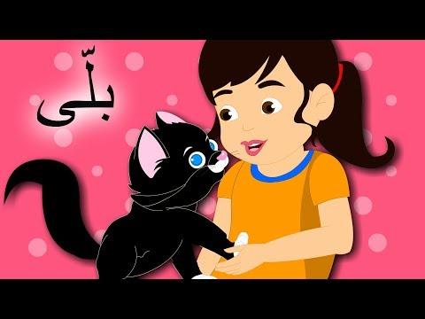 Billi Mein Ne Pali Hai and More | بلّی اردو نظم | Urdu Nursery Rhymes for Kids
