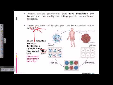 Cancer therapy (LAT and TIL cells)