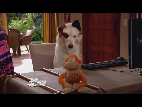 Dog With A Blog   S02 E24 The Kids Find Out Stan Blogs