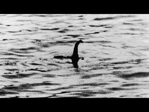DNA testing to finally settle legend of the Loch Ness Monster