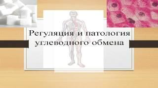 Биохимия Урок 6  Регуляция и патология углеводного обмена