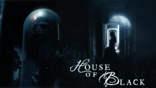 the noble house of black.