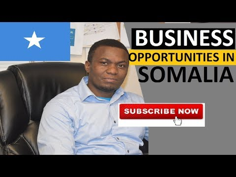 TOP 10 Business Opportunities in Somalia