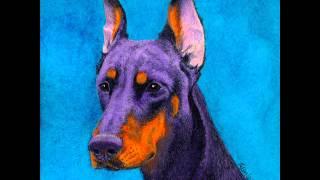Jinx - Doberman Pinscher Portrait