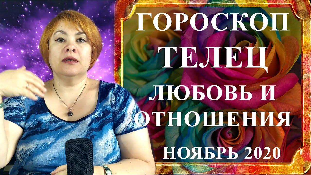 ТЕЛЕЦ – любовь и отношения ноябрь 2020 (любовный гороскоп)