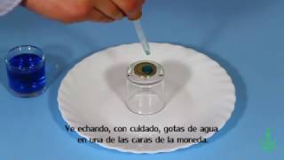Una cúpula sobre la moneda. Experimentos (Divertiaula). Cool Surface tension experiment