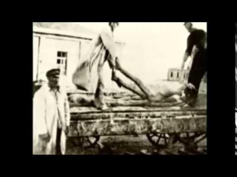 Holodomor - Völkermord an Ukrainern