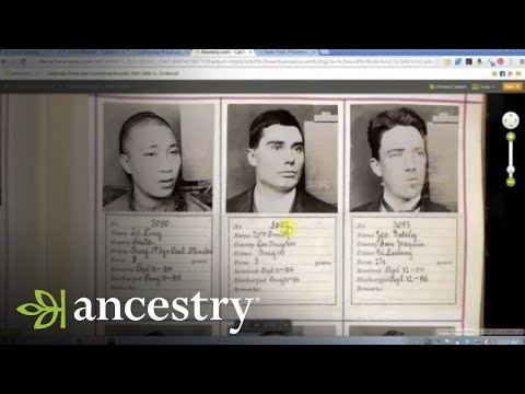 Black Sheep in Your Family Tree | Ancestry