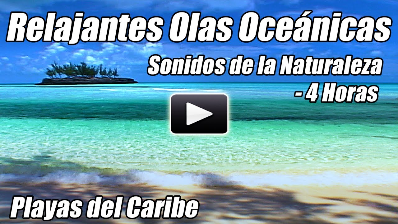Olas oceánicas que se relajan sonidos de la naturaleza del agua 4 meditación relax estudio sueño