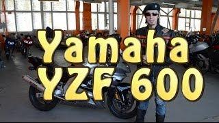 [Докатились!] Обзор Yamaha Yzf 600 Thundercat. Задиристый Котик.