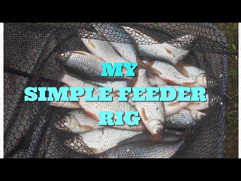 ROACH FISHING   MY SIMPLE FEEDER RIG PLUS SESSION