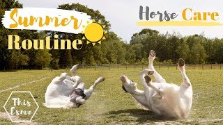 SUMMER Horse Care ROUTINE | AD | This Esme