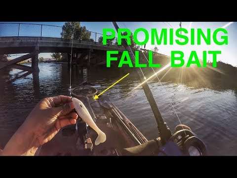 Early Fall Bass Baits On The California Delta