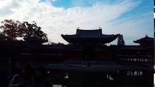 교토 우지 뵤도인(京都府宇治市平等院鳳凰堂)
