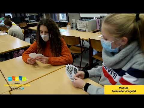 Sint-Aloysiuscollege - Modules