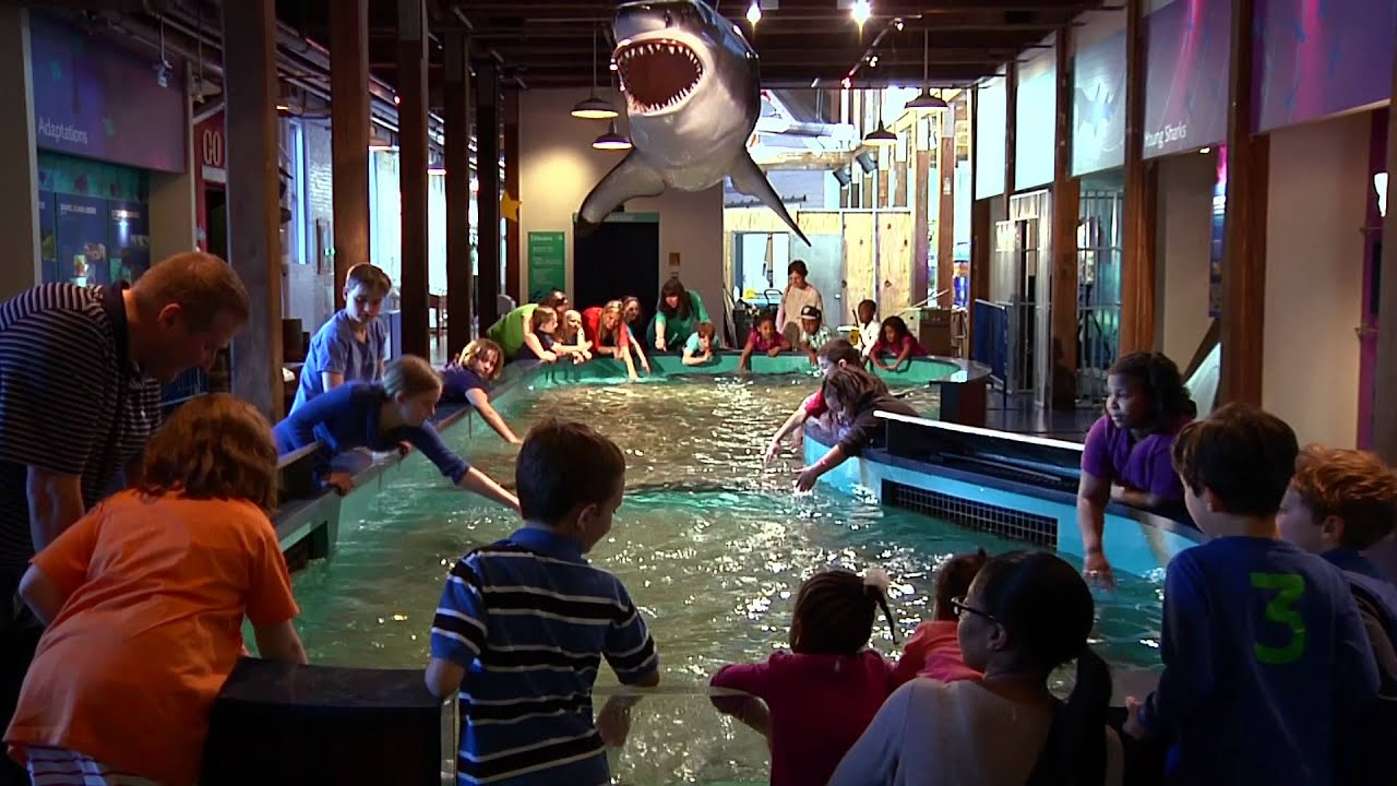 Maritime Aquarium Norwalk